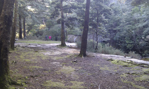 Butterfly Creek picnic area