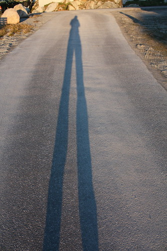 Shadow Portrait