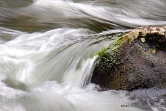 Rapids (Gary Grossman) Tags: wild oregon river whitewater scenic fresh rapids clean cascades salmonriver zigzag freshwater cascademountains pristine mountainfresh roughwater wildandscenicriver mygearandmepremium