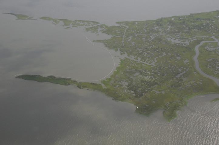 bayou laying boom_3447 web