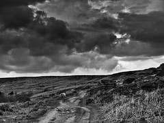 Foxhouse_270409_0151BW (Steve Bark) Tags: clouds landscape district derbyshire peak stormy olympus moors e510 foxhouse fourthirds esystem copyrightstevebark