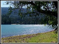 Bass Lake, California, USA (lgal3824) Tags: lake fish mountains tree nature water fishing lakes basslake spiritofphotography california071110