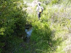 Trace de retour N depuis Balistra : zones humides