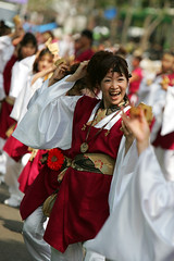 高知よさこい祭り2005