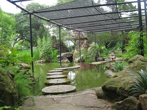 Trellis Pond 4