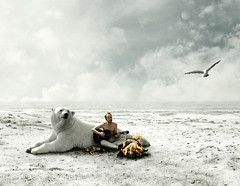 serve (Mattijn) Tags: bear music fish snow cat fire gull surreal polarbear photomontage mattijn rhenen magicrealism