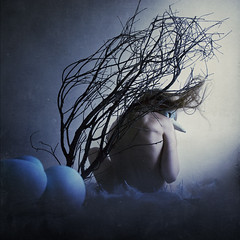 home for a recluse (brookeshaden) Tags: blue bird branch mask nest feathers explore human eggs moonlight frontpage dreamcatcher selfie brookeshaden texturebylesbrumes