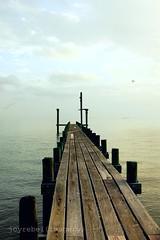 Half the fun of the travel is the esthetic of lostness.  ~Ray Bradbury (sananda photography) Tags: ocean blue texas earlymorning journey doc galvestonbay bacliff mortalmuses