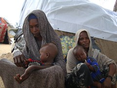 UNHCR News Story: UNHCR concerned about deportations to Mogadishu as fighting continues (UNHCR) Tags: family baby news women child mother middleeast story violence yemen fighting shelter asylum information protection riyadh saudiarabia deportation assistance abuse unhcr somalia insecurity hornofafrica displacement newsstory idps humanright civilians mogadishu internallydisplacedpeople deportations displacedpeople unrefugeeagency internalviolence alshabaabmilitia makeshiftsites