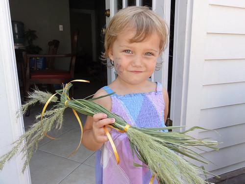 Grass Horsie