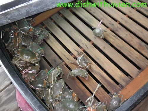 meat-crab