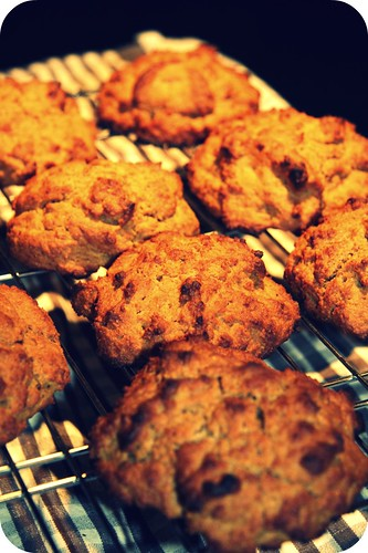 sweet potato biscuits cooling