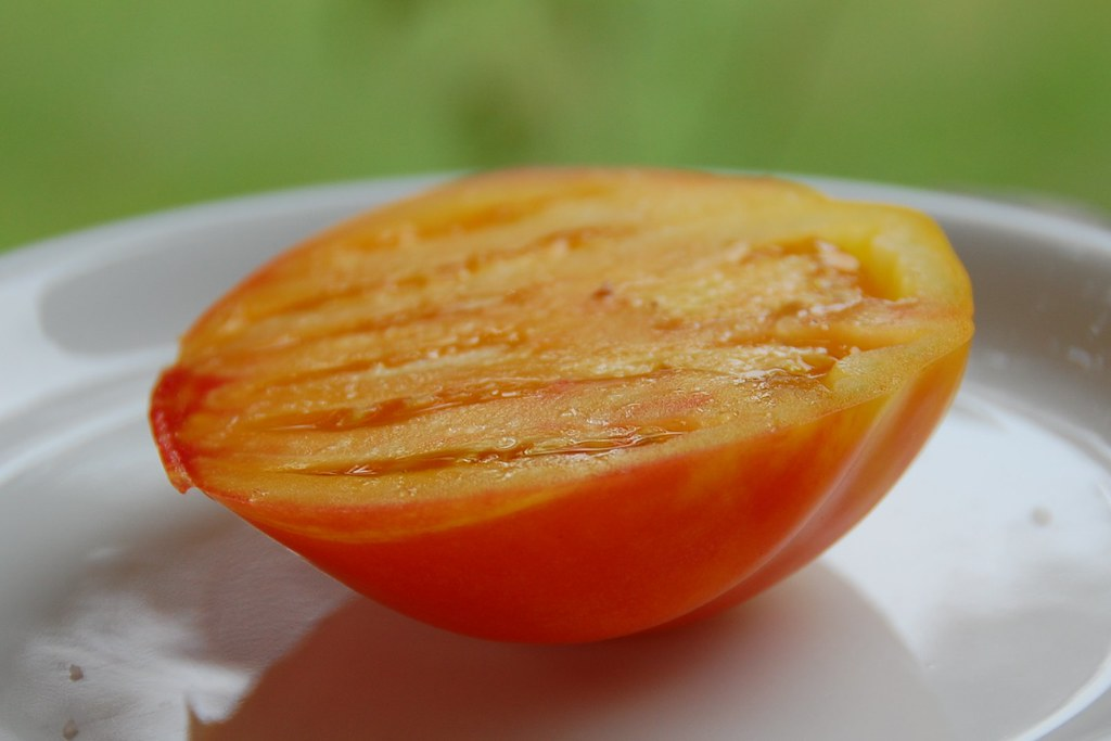 Gold Medal tomato, sliced & salted