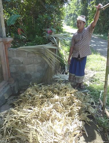 Bali-Tirtagangga (61)