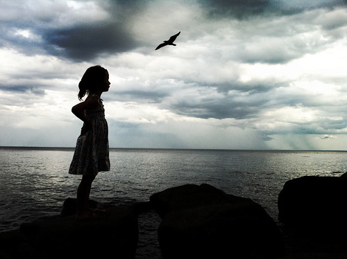 distant storms, a bird, and a little girl    [explored]