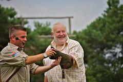 Dagje Beekse Bergen (RoelJewel) Tags: animal animals zoo nederland thenetherlands zebra giraffe bergen bos dieren dier dagjeuit augustus beeksebergen 2010 noordbrabant dierentuin kleuren beekse hilvarenbeek roofvogel roofvogels roofvogelshow 1augustus2010