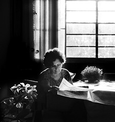 Mom Reading (AnnuskA  - AnnA Theodora) Tags: light blackandwhite plants love window reading newspaper darkness orchids candid mother clarity catleya labiata
