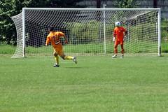 Soccer: Mindset ©2010 Marius Butuc