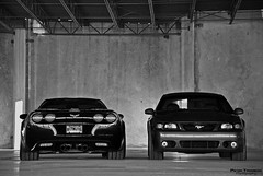 ZO6 and Cobra (Peter Tromboni Photography) Tags: white black color cars ford chevrolet sports nikon cobra photoshoot florida muscle automotive chevy american naples mustang corvette selective zo6