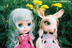Sally & Estella