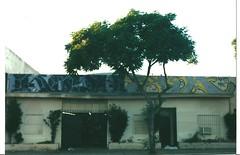 KOSHN/PYSA (BGIZL) Tags: graffiti lts gms kosh kog dtr pysa d2r koshn