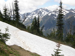 Snowfield crossing past Marmot Pass (not on trail to Marmot Pass).
