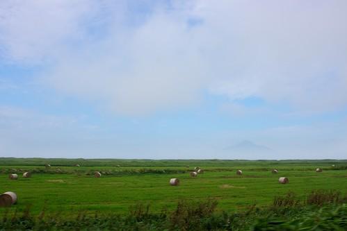 利尻富士が牧草地越しに薄らと