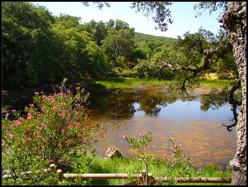Laguna El Picacho (3)