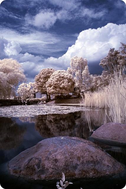 Lake eerie.