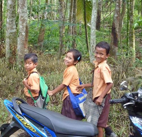 Bukit Lawang - Région (3)