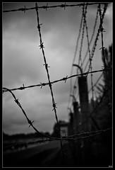 KZ-Gedenkstätte Dachau / Concentration Camp Dachau (Akira67) Tags: camp white black canon germany munich bayern deutschland bavaria eos concentration holocaust memorial noir wwii railway nb retro 1d jew jewish munchen dachau et arbeit allemagne blanc bnw shoah frei macht extermination juif nazism juifs nazismo kzgedenkstätte konzentrazionslager làger
