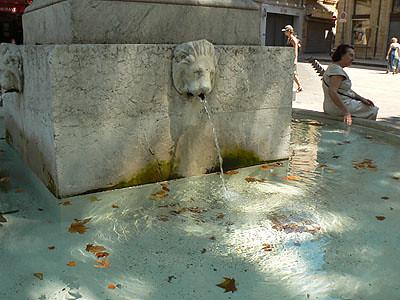 feuilles et fontaines.jpg