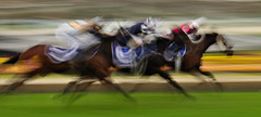 Catch Me If You Can (andrewfuller62) Tags: horses horse motion blur colour speed movement nikon australia melbourne motionblur horseracing racehorse thoroughbred whipping racehorses gallopers sportofkings thoroughbredracing mooneevalley gallops headbobbing nikond300