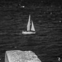 - cap frehel - (Franz-Renan Joly) Tags: sea summer bw mer white black water rock boat brittany eau day view bretagne nb jour breizh cap t bateau et blanc vue manche noire frehel