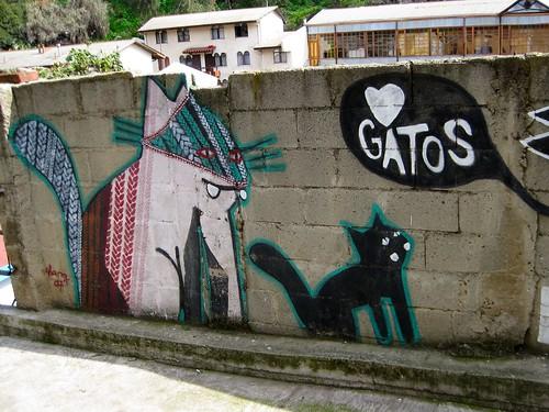 Valparaiso Gatos