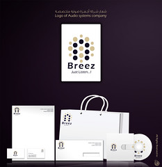 Breez systems Identity ( ) Tags: logo design systems identity vector  breez