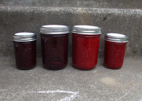 adventures in freezer jam