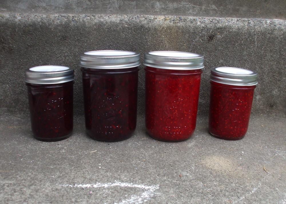 adventures in freezer jam