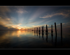 I remember back when (Reedy Photography) Tags: nightphotography sunset reflection water boat jetty poles moretonbay canon7d reedyphotography fuckingawesomesunset