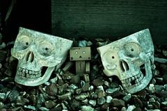 Chillin' with Yorrick and Hamlet (peachyboii) Tags: canon eos 40d lightroom photography danbo danboard cardbo amazon figurine boxes cardboard everyday ef macro skulls hamlet yorrick smile bone creepy 50mm f18