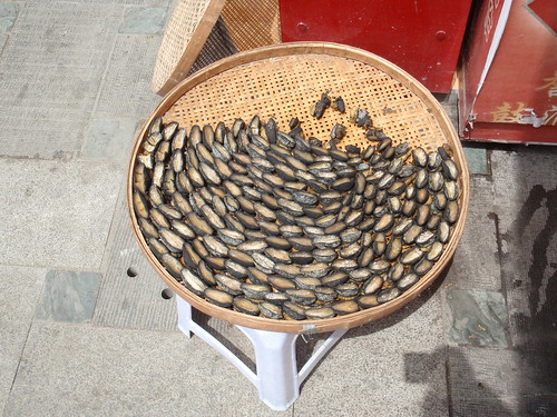 Drying fish
