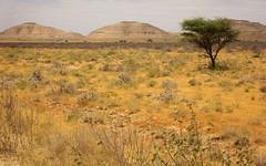 10c. Hills near Las Anod