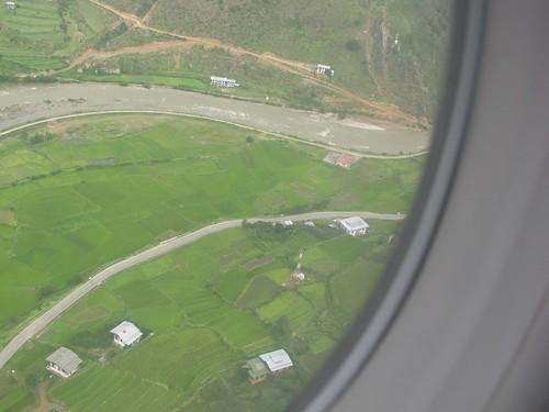 Paro green