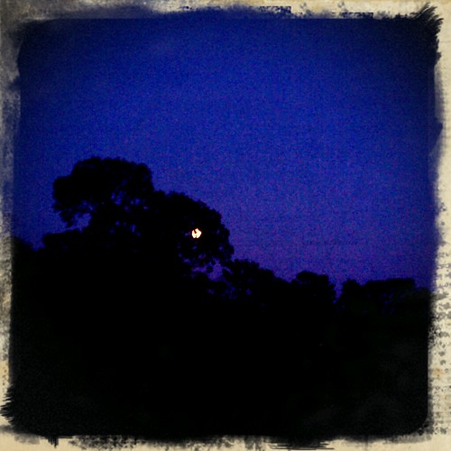 Retro Camera :: Full Moon
