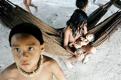 Zoe Tribe Children Tags: zoe tribe amazonian