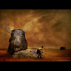 Buffalo's Rock