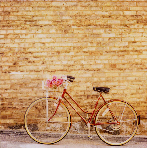 simple pleasures biking_via mrsamberapple