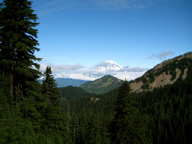 Rainier from Coyote Ridge