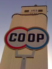 Ames Coop