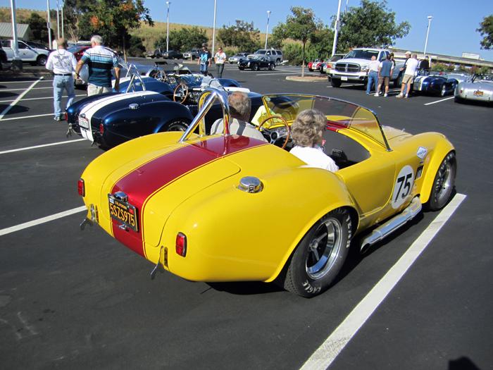 Cobra 025